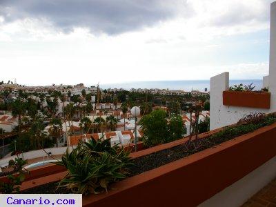 Imagen de Alquiler de apartamento en San Eugenio Alto, Adeje